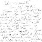 Brief August 1978